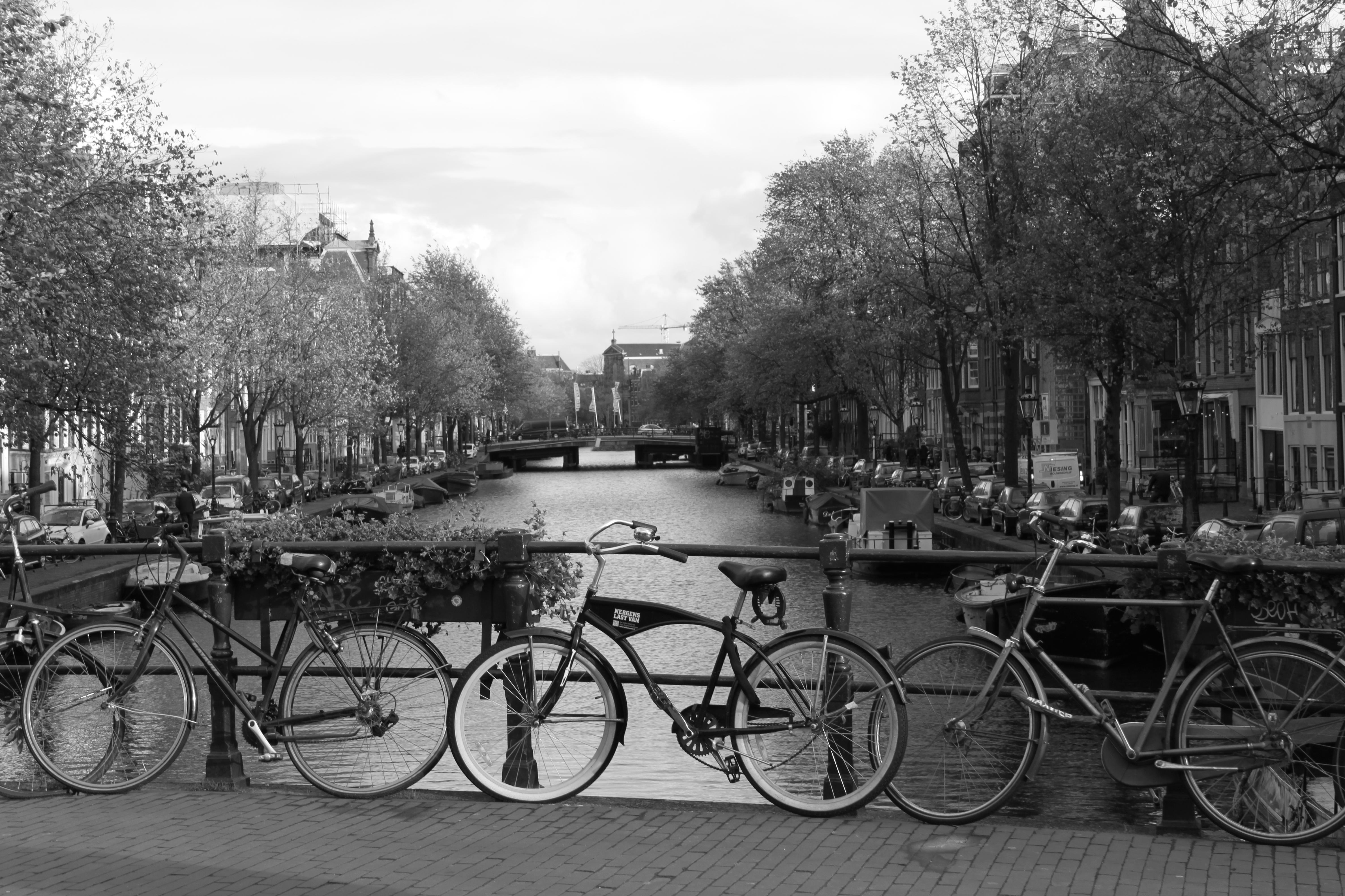 Due giorni ad Amsterdam - Tra canali, biciclette, luci rosse e tanto altro 1