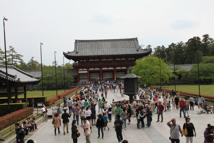visitare Nara