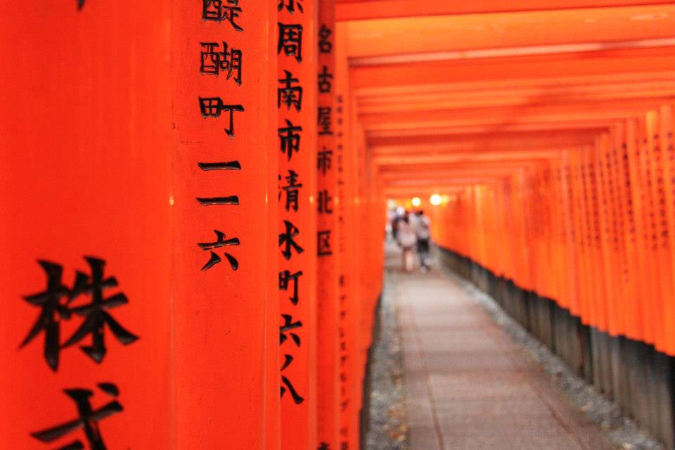 Un consiglio per la primavera: il Giappone