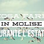 #Restateincittà: cosa fare in Molise durante i mesi estivi?