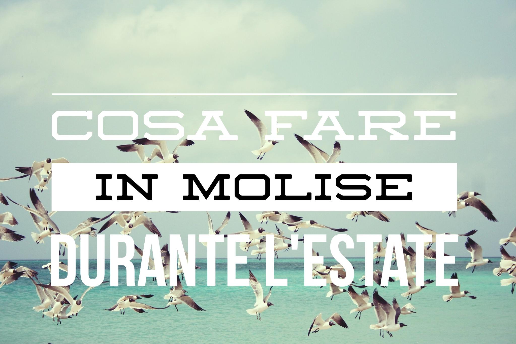 #Restateincittà: cosa fare in Molise durante i mesi estivi? 7