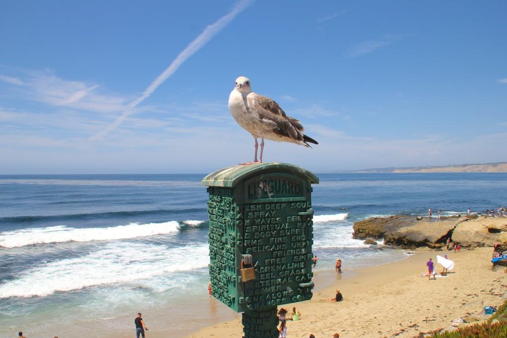 due giorni a San Diego