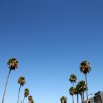 Los Angeles, perché tutti ti odiano?