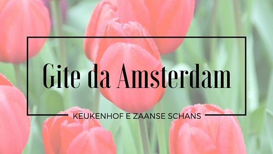 Gite da Amsterdam: Keukenhof e Zaanse Schans