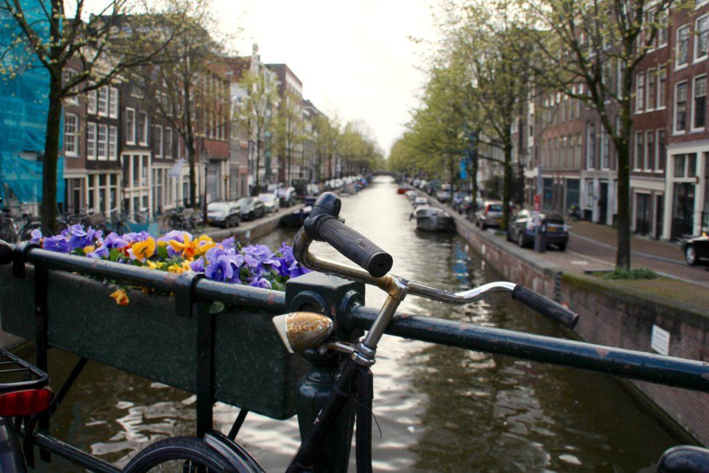 voli per amsterdam