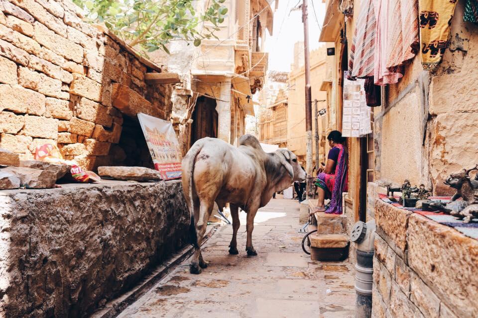 viaggio in India