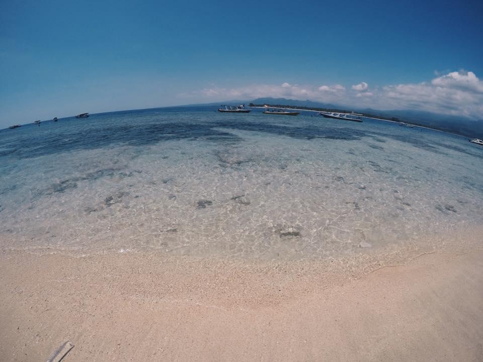 mare in indonesia