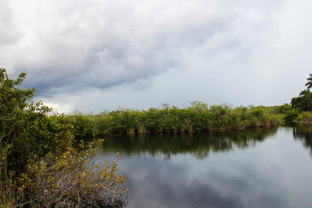 visitare l'everglades national park
