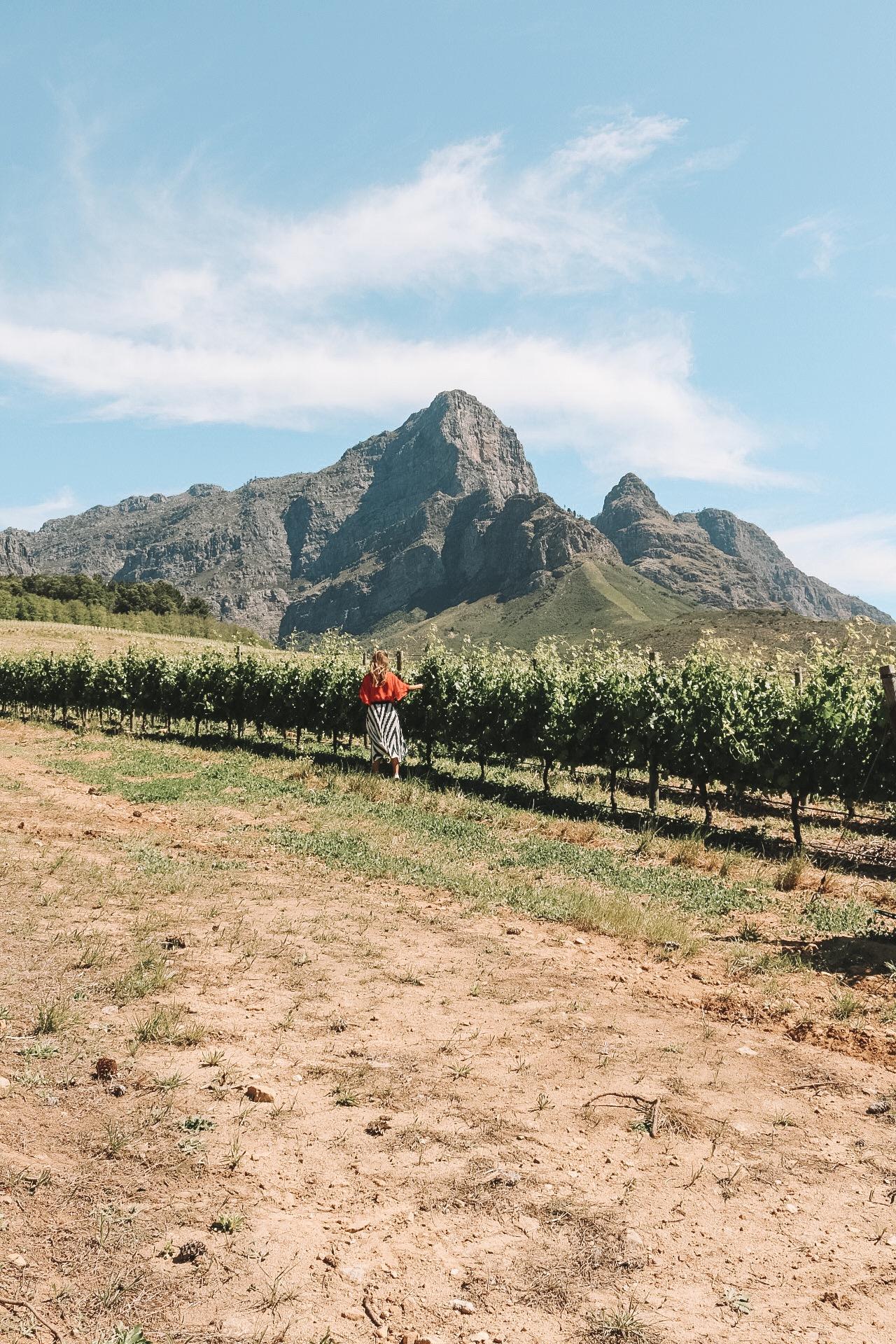 10 giorni in sudafrica