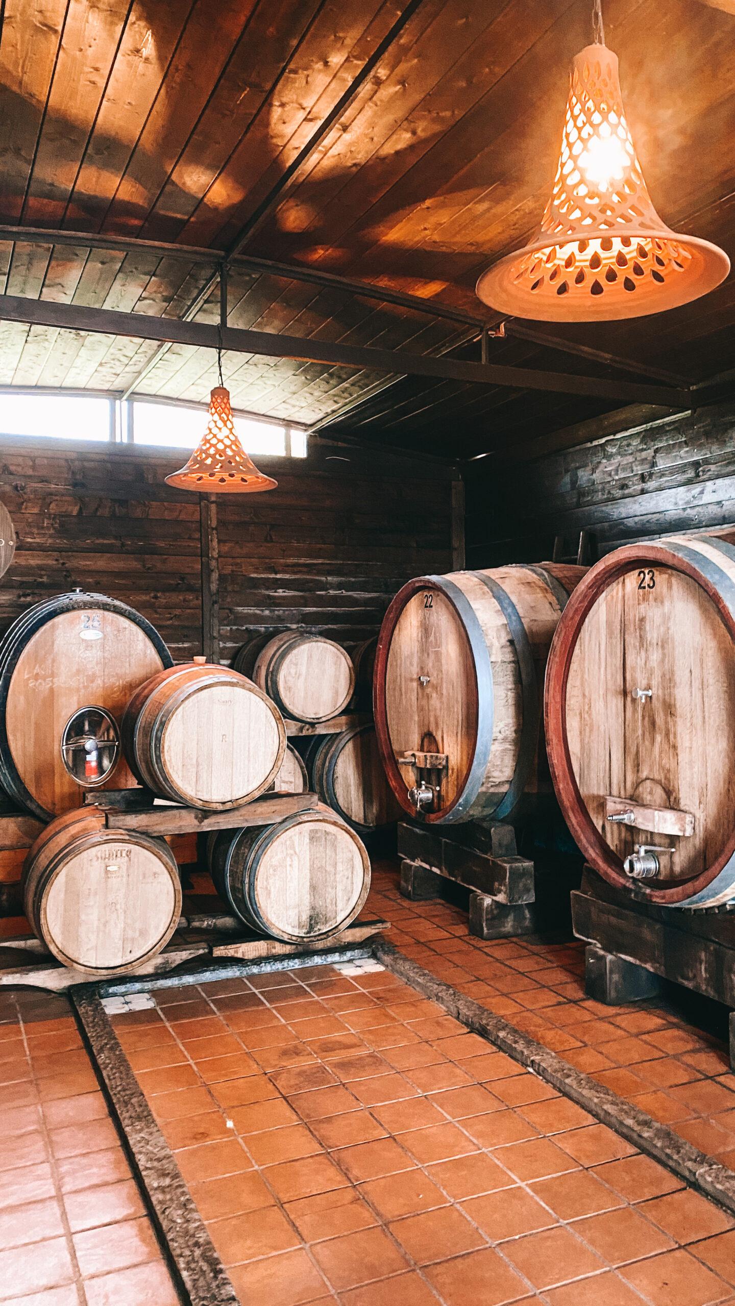 degustazione di vino vicino napoli